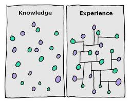 psychology quotes on the difference between experience