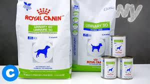 prescription urinary so dog food