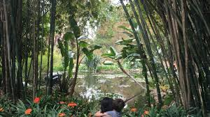 must do huntington botanical gardens