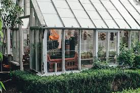 Image result for green house
