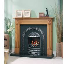 package with tulip cast iron fire insert