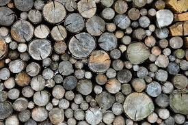 firewood for your wood stove or fireplace