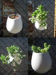 Fence Workshop Chain Link Fence Company Hanging Plants Flower Pots Indoor Greenhouse