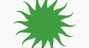 Green Leaf Wall Decal Vergina Sun Sticker Symbol Sunlight Tree Line Png Nextpng