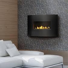 napoleon gas vent free wall mount