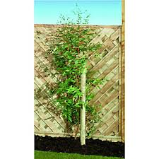 Fence Posts Concrete Fence Posts Wooden Fence Posts Wickes