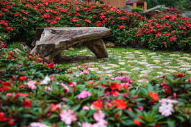 natural wooden bench in flower gardens
