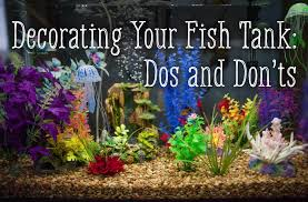 how to decorate your fish tank dos and