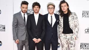 one direction highest earning ians