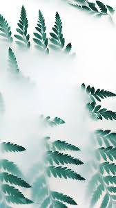 oc53 leaf hip minimal tree flower