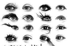 eye brushes for photo
