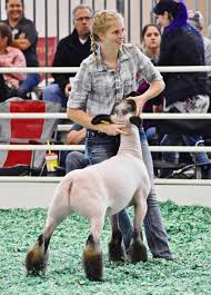 Local youths perform well at Kansas State Fair | Agriculture |  republic-online.com