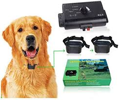 Amazon Com Underground Electric Dog Fence Pet Electric Containment System Safe Effective Beep Shock Dog Fence Waterproof Collar Receiver Area Up To 5000 Square Meters Over 1 2 Acres For2dogs Sxdd Pet Supplies