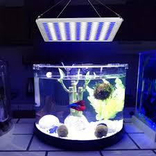 Vật Có Đèn LED Bể Cá 75 W Phát Triển Ánh Sáng Xanh Trắng 91: 78 Cho Vật Có  Mầm Bể Cá Cảnh Bể Cá|