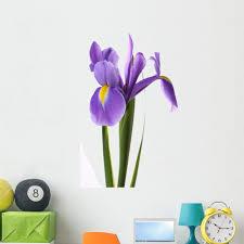 Amazon Com Wallmonkeys Purple Iris Wall Decal Peel And Stick Floral Graphic 48 In H X 32 In W Wm267744 Furniture Decor