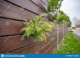 Wooden Fence In Front Of Green Garden Of Family House Stock Photo Image Of Background Brown 165958272