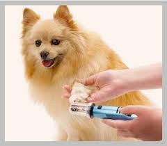 top 5 best dog nail grinders reviews