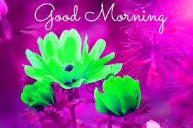 spring good morning images wallpaper