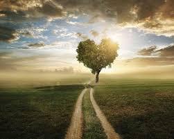 Sua vida é seu caminho espiritual