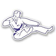 2 X Karate Blue Belt Sticker Car Bike Ipad Laptop Martial Arts Judo Gift 4183 Ebay