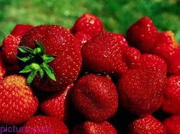 صور فراوله حمراء جميلة فاكهة فروله 2020 أجمل صور ثمار الفراولة