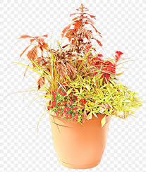 Fence Cartoon Png 900x1060px Cartoon Annual Plant Box Coleus Container Garden Download Free