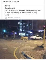 Did Putin let lions and tigers loose on ...
