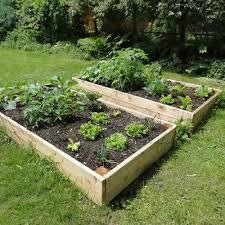 raised garden beds 8ft x 4ft