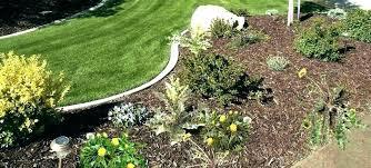 weed barrier for vegetable garden