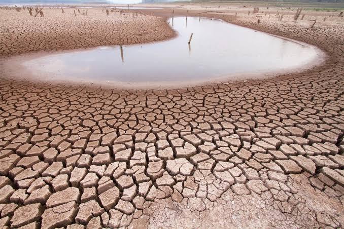 """Resultado de imagem para seca no nordeste"""""""