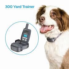 Premier Pet 300 Yard Remote Trainer Easy To Use Dog Training Collar Walmart Com Walmart Com