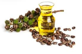 Castor Oil With Castor Fruits, Seeds And Leaf. Stock Photo ...