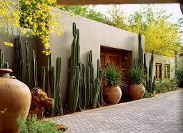 Southwest Style Cactus On Guard Sunset Magazine