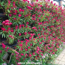 wall vertical garden planter plastic