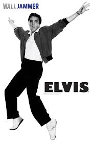 Advanced Graphics Elvis Arms In Air Wall Decal Wayfair