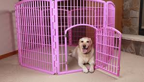 The 9 Best Indoor Dog Pens For Every Kind Of Dog Pet Products