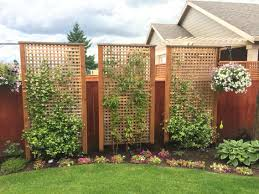 Landscaping Pretty Privacy Honeysuckle And Jasmine Privacy Fence Landscaping Backyard Landscaping Designs Backyard Fences