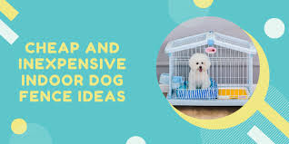 30 Cheap Inexpensive Indoor Dog Fence Ideas The Box Reviewers Subscription Box Reviews By Subscription Box Owners Focusing On Real Value Not Retail