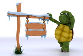 Turtle On A Fencepost Sermons Articles