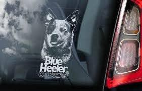 Blue Heeler Car Sticker Australian Cattle Dog Window Sign Decal Gift Pet V01 Ebay