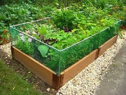 Raised Garden Bed Rabbit Fence