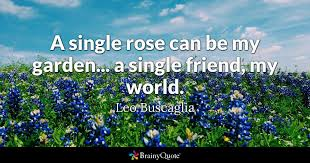 leo buscaglia a single rose can be my garden a single