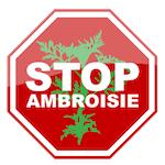 Stop Ambroisie | Luttons contre l'allergie