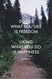 daily inspiration doing what you like is dom liking what you