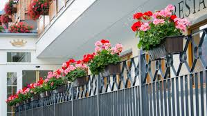 Hanging Flower Pots With Fence Stock Photo Picture And Royalty Free Image Image 24295247