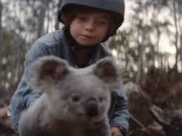 nrma insurance boy saving koala mercial