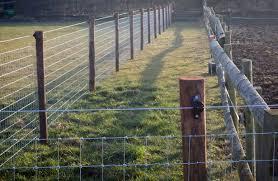 Horse Nettingessex Field Fencing