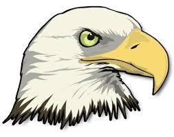 Bald Eagle Head Wall Sticker Custom Wall Graphics