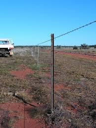 Fencing The Hay Paddock Charles Darwin Reserve Community History