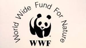 WWF accused of funding guards who torture and kill in poaching war ...